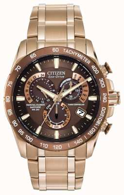 Citizen Mens chronographe perpétuel à l'acier inoxydable plaqué or AT4106-52X