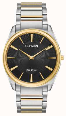 Citizen Analogique à quartz bicolore à quartz AR3074-54E