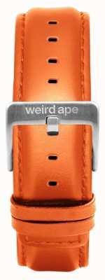 Weird Ape Bracelet en cuir noir 16mm boucle argentée ST01-000111