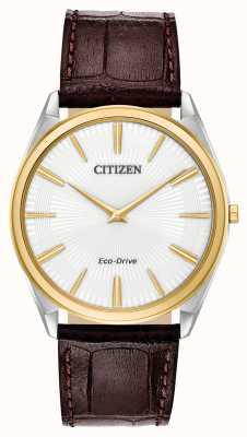 Citizen Stiletto | conduite écologique pour hommes | bracelet en cuir marron | cadran blanc AR3074-03A